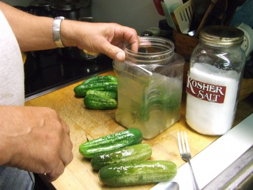 We add fresh cleaned and poked cucumbers with a little Kosher salt, garlic and fresh dill from the garden, to Dill Pickles that we bought from the store. In a few days they are perfect Dill Pickles.