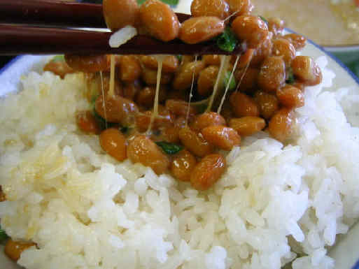 Natto on Rice Natto: sticky fermented soybeans