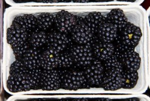 Freeze fresh blackberries with or without sugar.