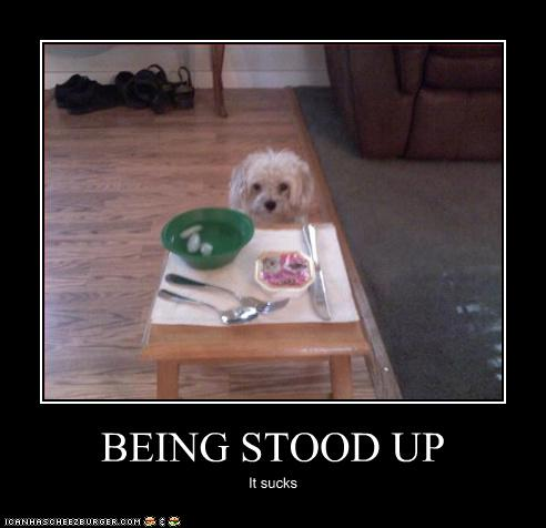 Being stood up shouldn't happen to a dog!