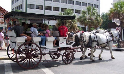 Horse Drawn Carriage Rides are a Romantic Way to Tour the City