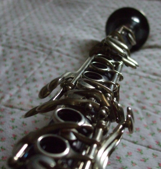For the record, I am told that this instrument is harder to play than a saxophone.