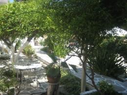The yard at the Argonauta Apartments.