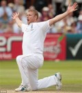 Andy Flintoff: England's hero, but only knee-high in the list of allrounders.