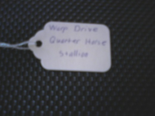 This is what the first side of a toe tag normally looks like. You might have a bit of trouble reading it here, but it lists the horse's name, breed, and gender. The exhibitor's name is on the other side.