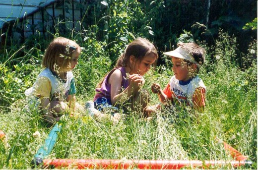 Children engrossed in learning from nature