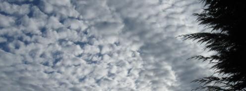 Cloudy Sky - Copyright Tricia Mason
