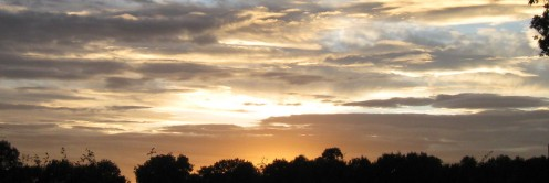Evening Sky - Copyright Tricia Mason