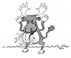 Rude Moose