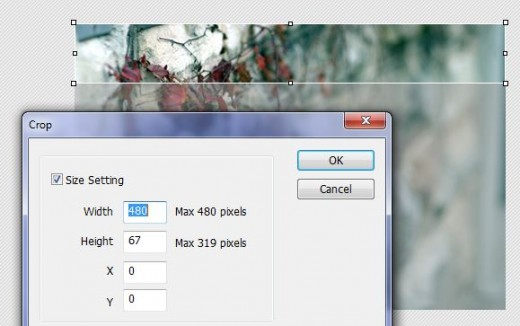 Make the width 480 pixels