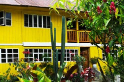 Yellow House – Secret Garden in the Ecuadorian Rainforest