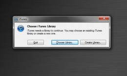 iTunes Library dialog box. (Click to enlarge)