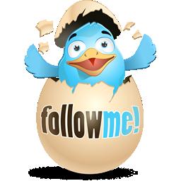 Twitter Follow Me button