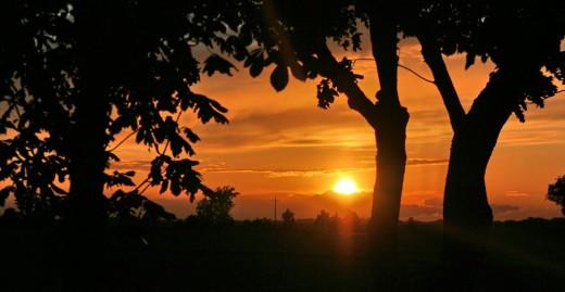 "Bild ""Goldener_Himmel-Sonnenuntergang"" von bilder.n3po.com"