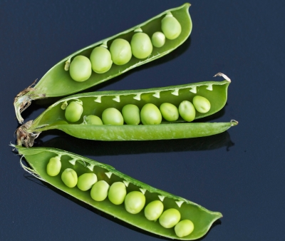Peas in a pod, literally.