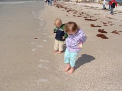 Beachcombing Basics: Best Tips for Summer Fun on the Shore