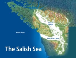 The Salish Sea is the name used for the combined bodies of water that make up Puget Sound, the Straight of Georgia, and the Straight of Juan De Fuca