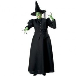 Wicked Witch Plus Elite Collection Adult