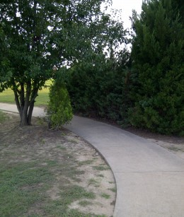I like being in a natural envorment when I walk.