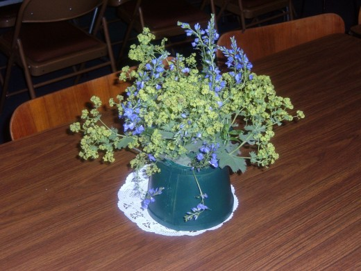 Lady's Mantel creates the folage and the light green bursts of color in this blue/green bouquet. The blue flowers are a type of Delphinium. Notice the blue/green color of the container which intensifies the flower colors.