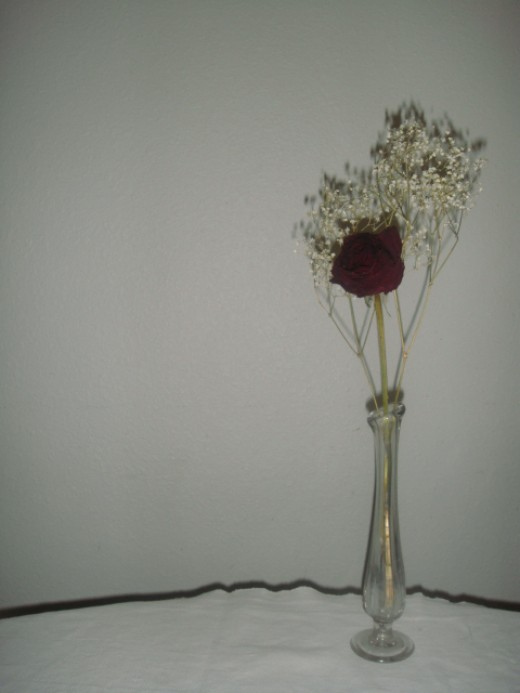 Dried rose in vase