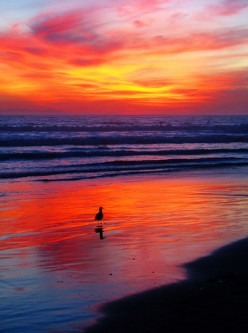 Sunset on Huntington Beach, California, Pacific Ocean
