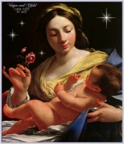 The Virgin Birth