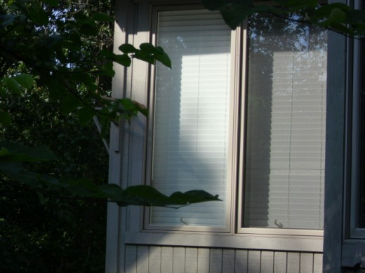 Untinted window, view from the outside
