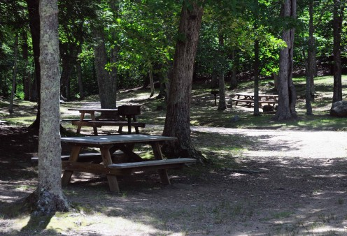 The beach picnic area