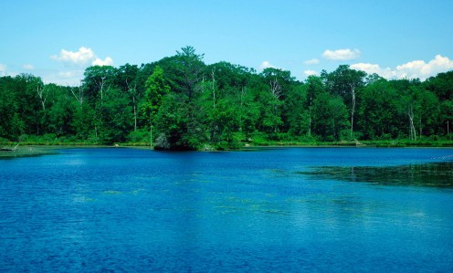 Main Pond at Gay State Park