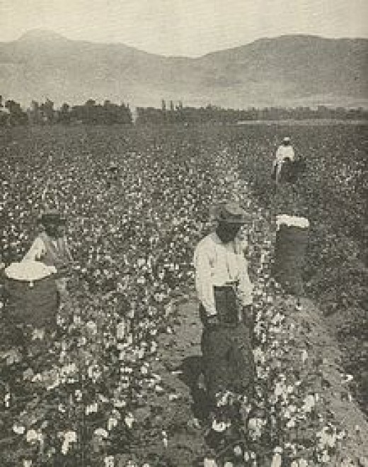 Authentic Black-American slaves working in the fields, 19th century