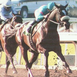 Zenyatta was voted Horse of the Year for 2010