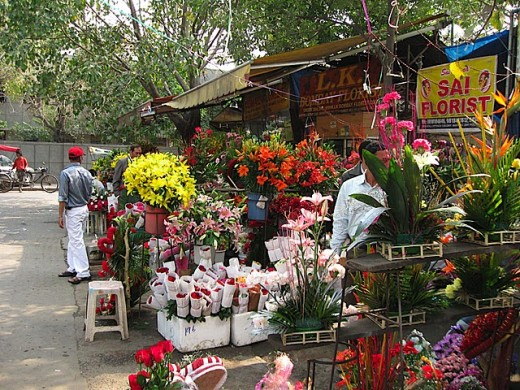 "On my way back home, I found a flower shop in Defense Colony Market in New Delhi - I was amazed to see that my favorite flower ""Beautiful Red Rose"" was there right on the entrance of the shop"