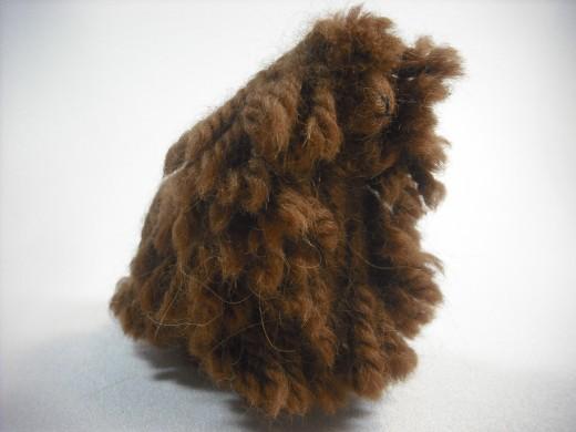 Suri is a type of alpaca.