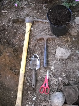 Tools for planting shade plants in rocky soil