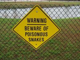 Snakes As Warning Symbols