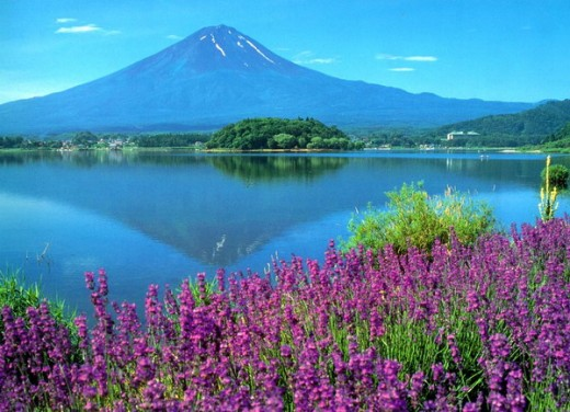 Beauty of Mountain Fuji and Kawaguchi Lake