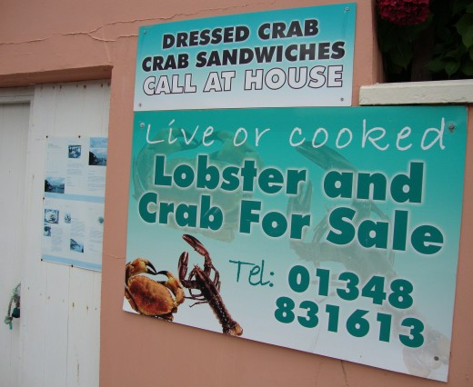 Snappy: Fresh lobster is on sale after being caught at sea and brought into the harbour