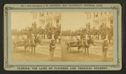 """A stereoscopic photo of an ex-slave receiving his """"40 acres and a mule"""""""