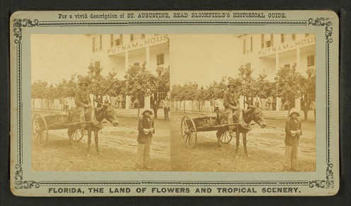 "A stereoscopic photo of an ex-slave receiving his ""40 acres and a mule"""