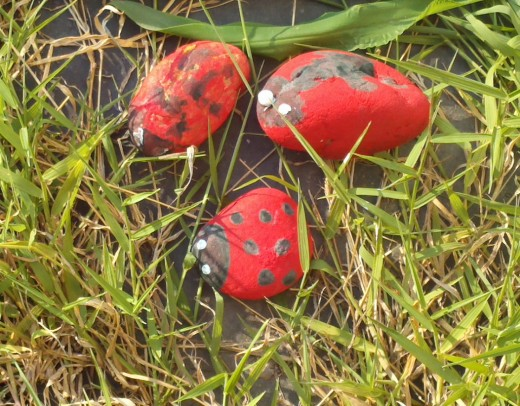 Our family of ladybugs sits in the grass.