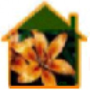 hlnorg profile image