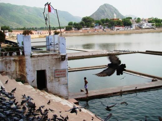 A Ghat in Puskar