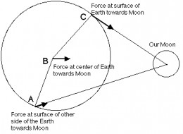 The earth and moon have dimension, which makes tidal influences vary around the world by location and time.
