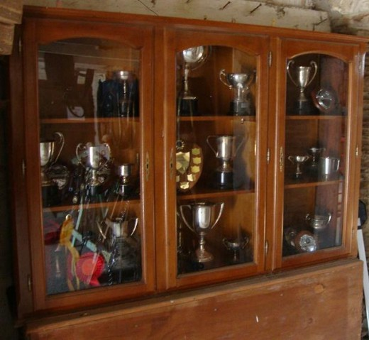 Prizes: The farm shows off the trophies that its Shire horses have won
