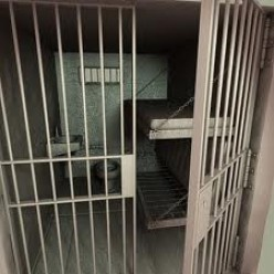Lowering the prison population and reducing criminality. The perfect solution to jail overcrowding.