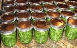 Canning Grean Beans