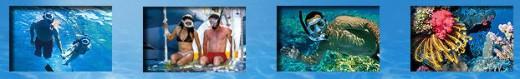FURY WATER ADVENTURES, Key West fl