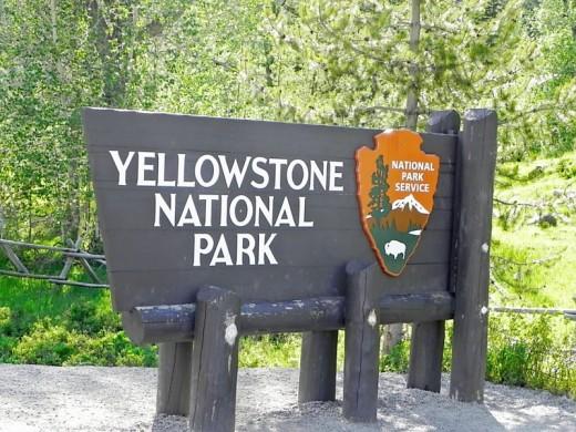 East Yellowstone Entrance