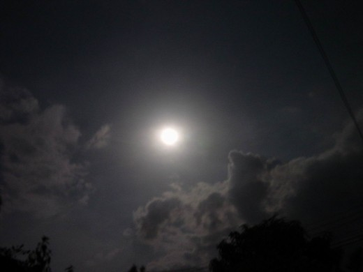 The full moon is out and the residents of Bon Temps are feeling its influence.